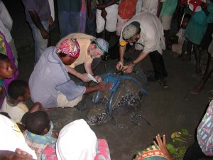 makata_papua new guinea leatherback conservation program