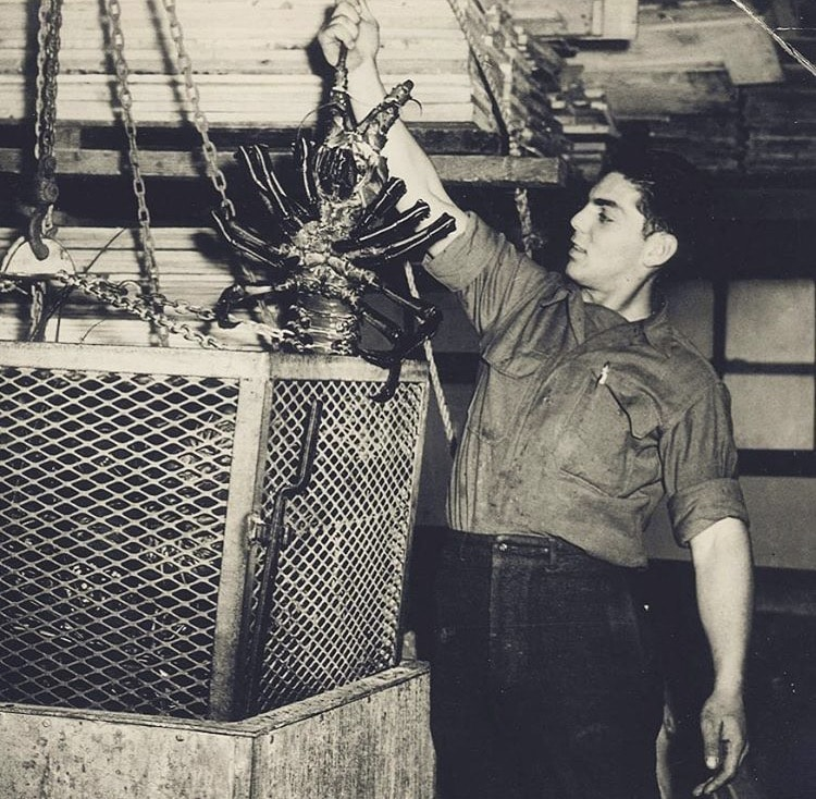 uncle frank holding spiny lobster
